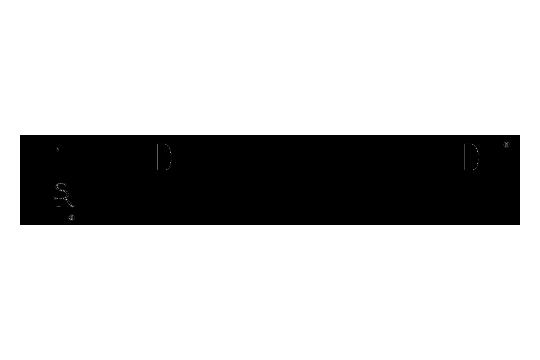Ruger Semi-Auto