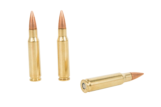 .308 - GunBroker.com